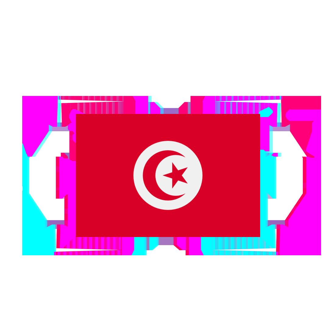 TUNISIA FLAG GLITCH 1